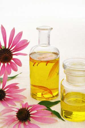 echinacea purpurea: Coneflower essential  oil in bottle - stillife