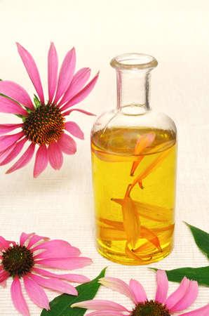 Coneflower essential  oil in bottle - stillife