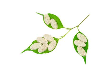 homeopatia: Pastillas de suplementos naturales y el concepto de la medicina nueva alternativa de hojas