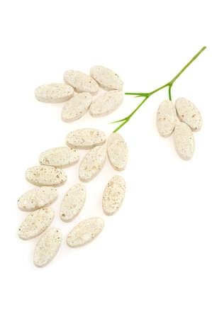 Plant made up of pills – alternative medicine concept