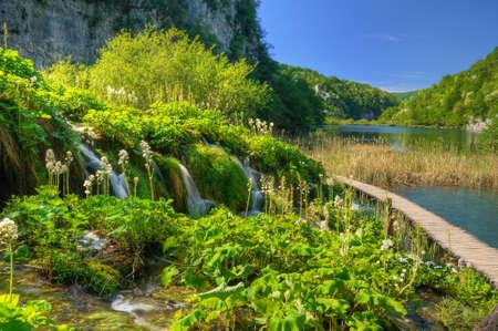 bridge in nature: Plitvice Lakes National Park, Croatia Stock Photo