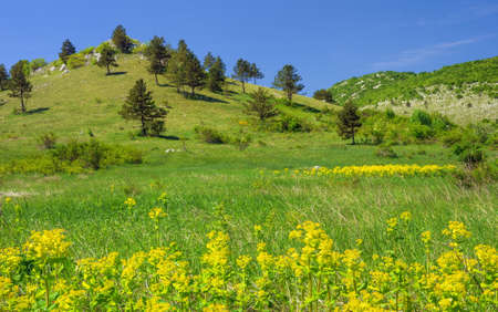 Mountain landscape in Lika , Croatia Stock Photo - 16279583