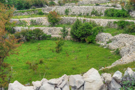 Sheep pasture, drystone walls, Rudine, Krk island, Croatia Stock Photo - 16388869