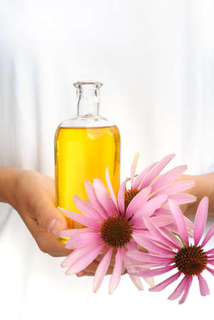 Hands of young woman holding essential oil and fresh coneflowers Standard-Bild