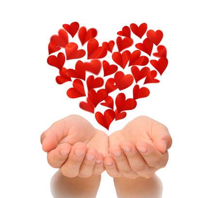 Corazones en forma de corazón que vuela sobre las manos ahuecadas de la mujer joven, tarjeta de cumpleaños, San Valentín, Día de San Valentín, día de San Valentín feliz, el amor concepto, aislado sobre fondo blanco, el concepto de seguro de salud, los corazones están hechos de pétalos de flores Foto de archivo