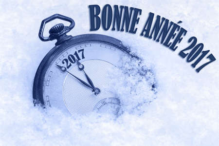 new years day: Bonne Annee, Happy New Year 2017 greeting in French language, text, greeting card 2017