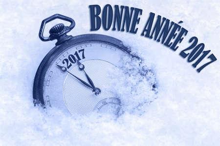 nouvel an: Bonne Annee, Happy New Year 2017 salutation en langue française, texte, carte de voeux 2017