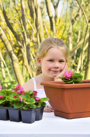 Little girl gardening, planting begonia seedlings in garden, happy child and flowers in pots photo