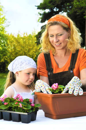 Young woman and little girl gardening in spring, planting flower seedlings, smiling mother and her happy child working in garden photo