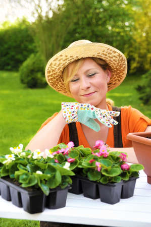 Young woman planting flower seedlings, gardening in spring, planting begonia flowers in pot, smiling woman working in garden photo