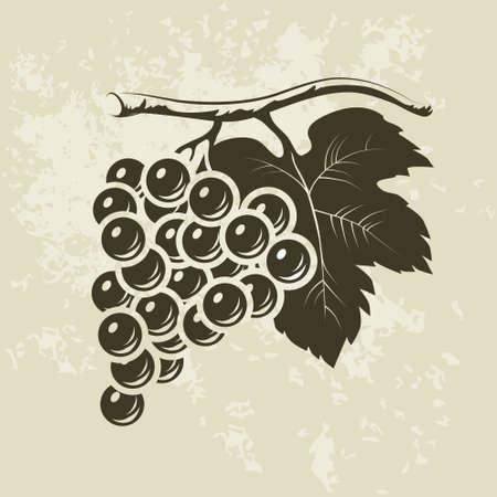 ワインのラベルのブドウの房
