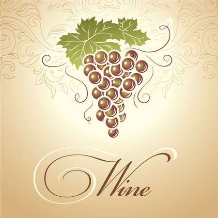 grape vines:  Bunch of grapes for labels of wine Illustration