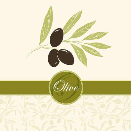 olivo arbol: Fondo de Oliva Vector decorativo rama de olivo para etiquetas, envase