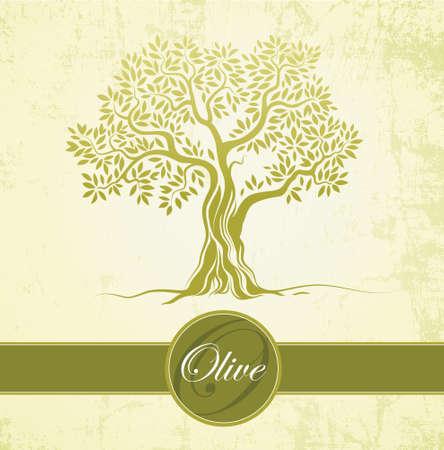 Olijfboom Olijfolie Vector olijfboom Voor etiketten, verpakking Stock Illustratie