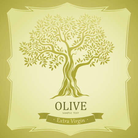 tree crown: Olive tree   Olive oil  Vector  olive tree  For labels, pack