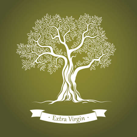 a tree: Olive tree   Olive oil  Vector  olive tree  For labels, pack