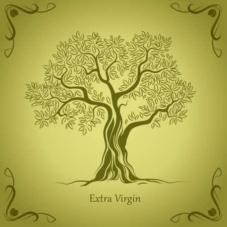 Olivenbaum Olivenöl Vector Olivenbaum Für Etiketten, Packungs Standard-Bild - 27448258