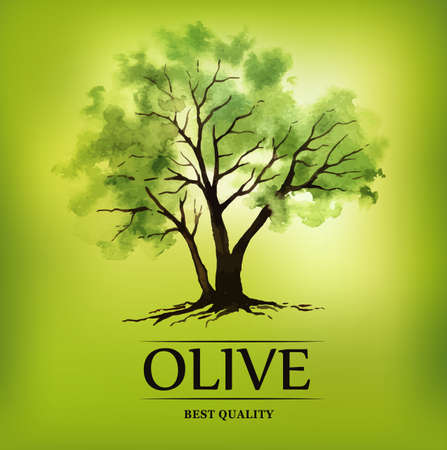 Hand drawn olive illustration with watercolor Vector