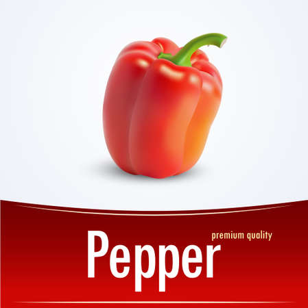 bell pepper: bell pepper, vector illustration paprika