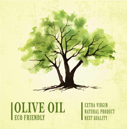 Hand drawn olive tree illustration with watercolor.eco friendly Illustration
