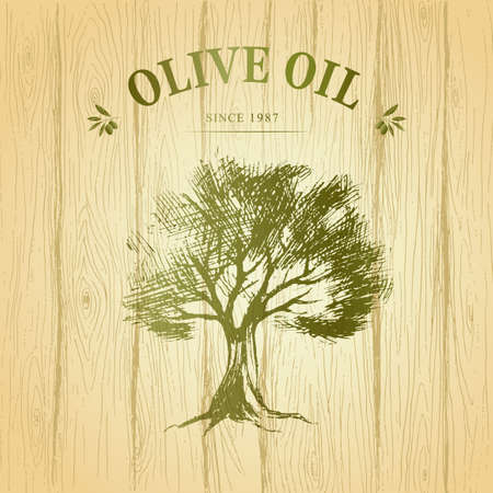 olive: wood paper. Vector. green olives