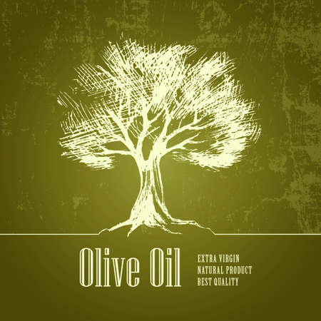 Olive tree. Olive oil. Vector . For labels, pack.