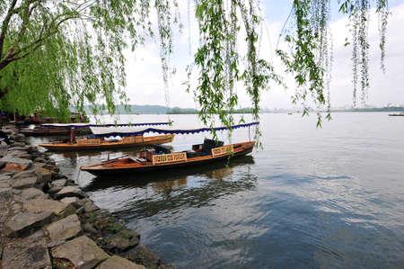 osier: West Lake, Hangzhou China