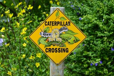 Caterpillar Crossing Sign At Florida Botanical Gardens In Largo ...