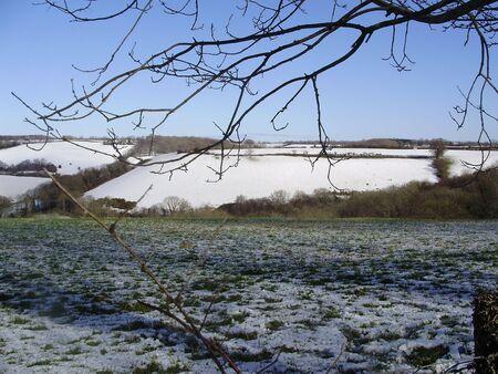 thawing: thawing