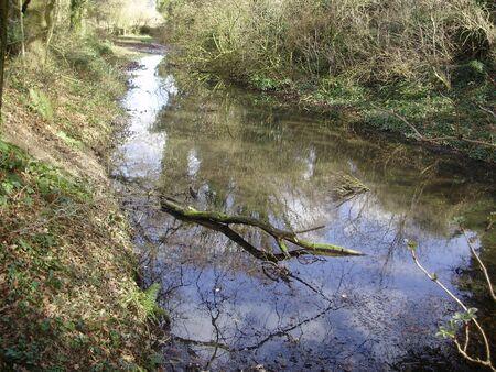 small brook