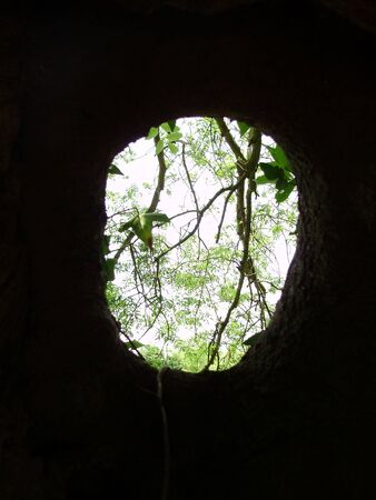 the hole view