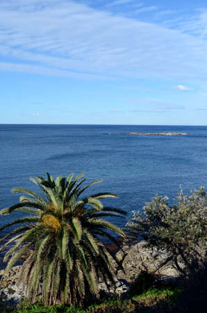 A view out sea from the southern headland of Coogee Beach in Sydney, Australia 스톡 콘텐츠 - 136812726