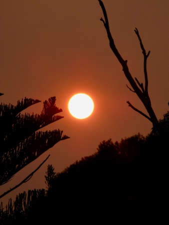 The sun sets in an orange sky during the bushfires in the Blue Mountains