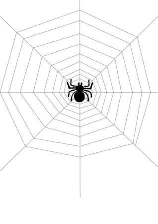 spinnennetz: Spinne im Netz Illustration