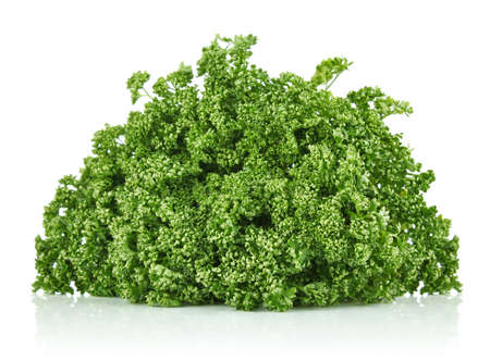 frizzy: fresh frizzy parsley isolated on white background