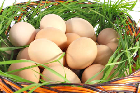 within: fresh chicken egg in basket with green grass Stock Photo