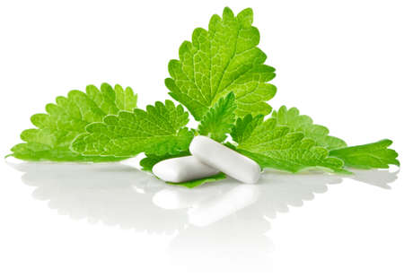 goma de mascar: fresco de la hoja verde de Melissa con la goma de mascar aisladas sobre fondo blanco