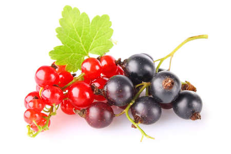 black and red currant with green leaf isolated on white background