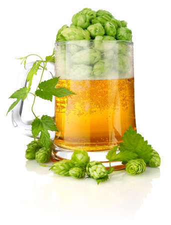 glass beer with rich and aromatic hop isolated on white background photo