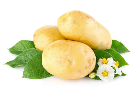 potatoes with leaves and flower isolated on white background photo