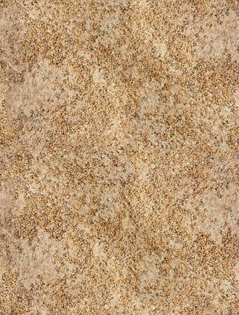 coquina: perfecta textura de Coquina