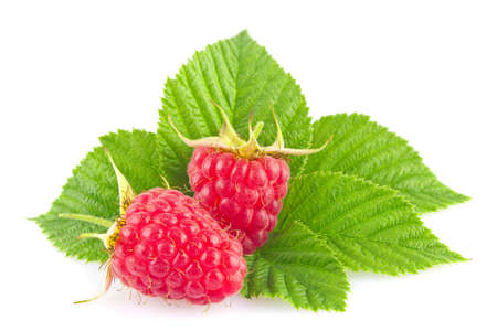 Ripe organic raspberry with green leaf isolated on white background
