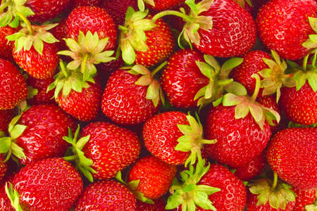 Background of ripe juicy organic farm strawberries with green leaves. Stock Photo