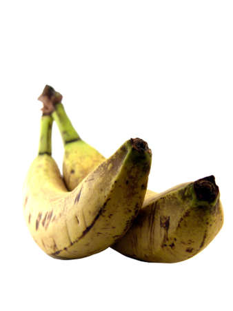 bad banana: portrait of two old bananas over white background