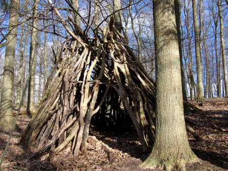 tepee: portrait of hut in forrest for campers