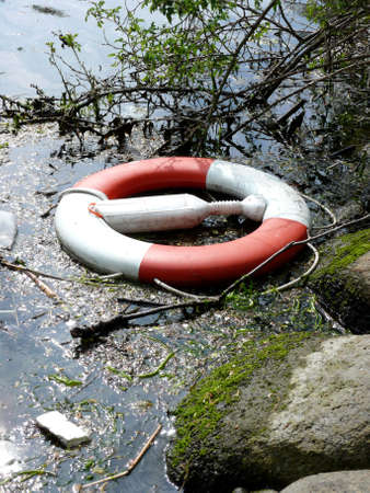 portrait of life buoy trown in water