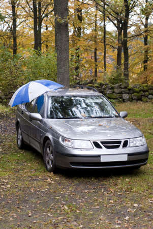 lifelike: portrait of car in forest topped with an umbrella