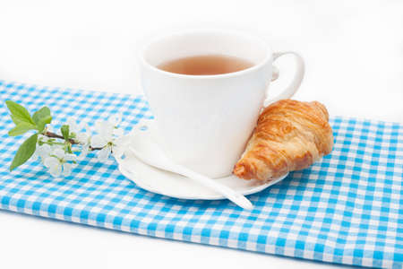 Tea cup with croissant and a sprig of cherry blossoms on red checkered napkin on white background photo