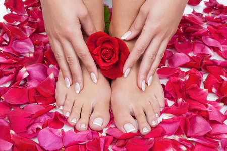 french pedicure: Elegant womans manicured hand and pedicured feet with red rose petals