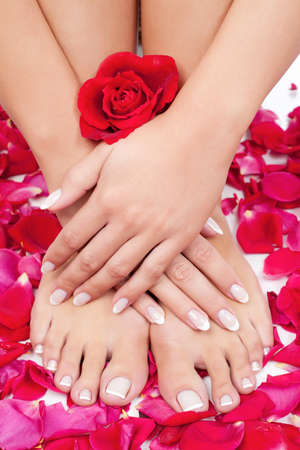 french pedicure: Elegant woman Stock Photo